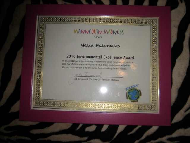Environmental Excellence Award from Mannequin Madness