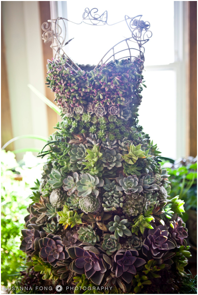 Five Examples Of Succulent Plants Growing On Mannequin